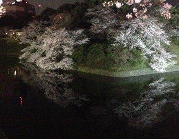 【なんと美しい東京の桜】東京の桜の名所3選を巡った後は尾張屋の絶品手打ちそばを食べよう!