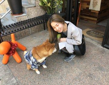 香港旅♡香港おすすめ観光スポット・モンコックのおすすめカフェ