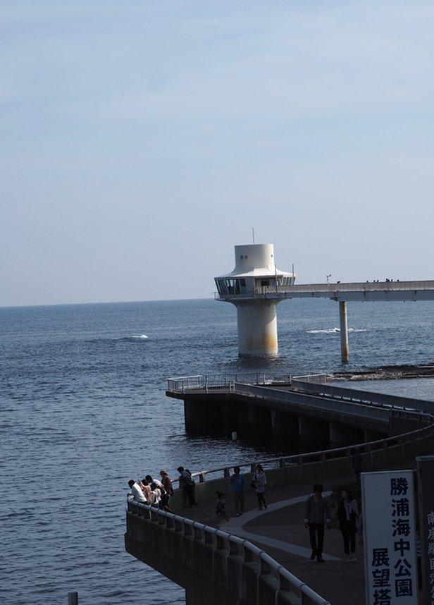 勝浦海中公園