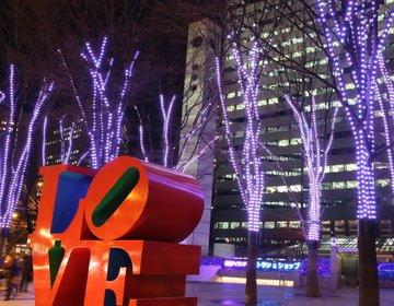 【新宿×クリスマスデートプラン】絶景新宿デート!素敵な夜景が見れるスポット!