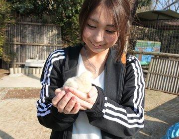 うどんだけじゃない!香川のうどんを楽しんだ後は動物と120%触れ合える動物園へ♡