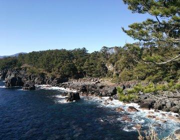 【伊豆】城ケ崎海岸ピクニカルコースを歩く!海と岩礁が織りなす絶景を見よう!