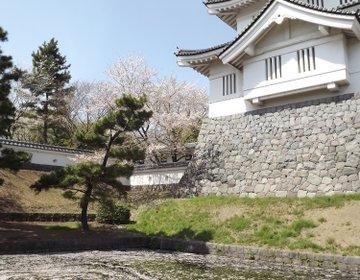 【のぼうの城をめぐる旅】埼玉県・行田を観光  さきたま古墳を訪れ、B級グルメ「ゼリーフライ」を食べる