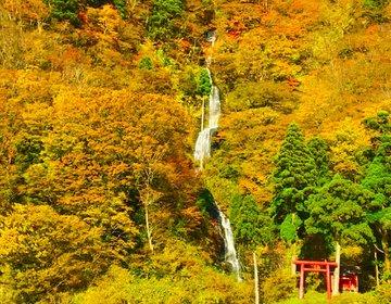 【山形の秋といえばこれ】東北旅行で行こう!最上峡舟下りで楽しむ白糸の滝と紅葉