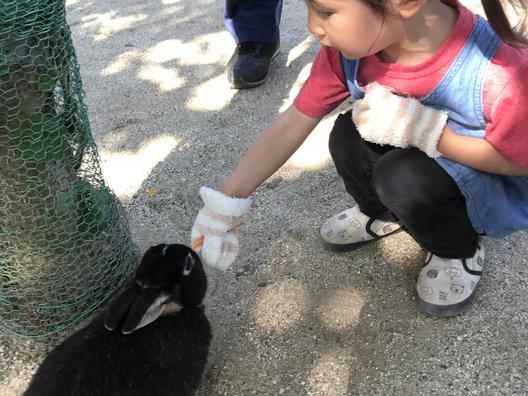 牛久大仏・ふれあい動物公園