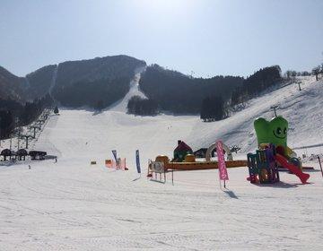 【彼と2人でスキーに行くならココ!】おすすめスキー場でウィンターデート♡3月が特におすすめ!?