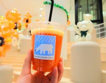 ファン必見!カフェやレストランも併設したファミリア神戸本店が移転後リニューアルオープン!