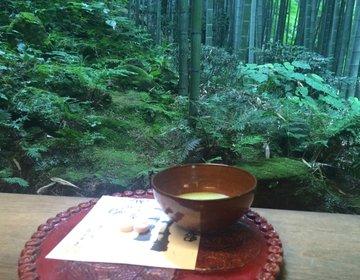 鎌倉で圧巻の竹林に癒される!知る人ぞ知る観光スポット・報国寺(ほうこくじ)