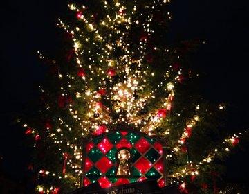 【クリぼっち女子に捧ぐ!】敢えて行きたい、みなとみらいのクリスマススポット半日プラン♡