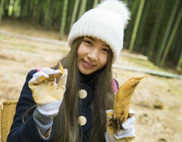 鹿児島インスタ映え旅♡さつま町で筍狩り&薩摩びーどろ工芸