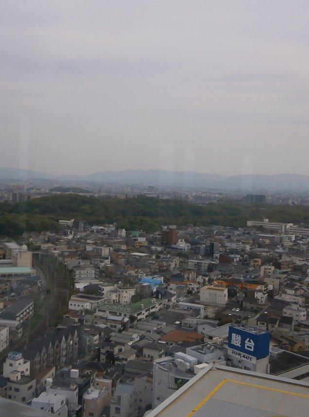 堺市庁舎展望ロビー