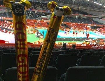 【スポーツ好き必見!】リオオリンピック・東京オリンピック予選はここで応援!