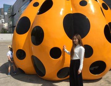 草間彌生我が永遠の魂〜かの有名なかぼちゃアートに出会える国立新美術館