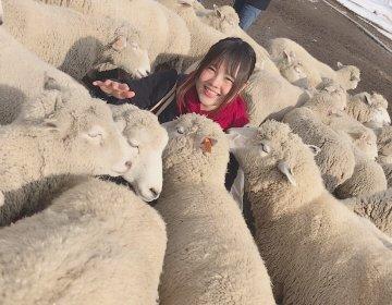 冬の群馬でモフモフ体験!「伊香保グリーン牧場」で近すぎる触れ合い♡