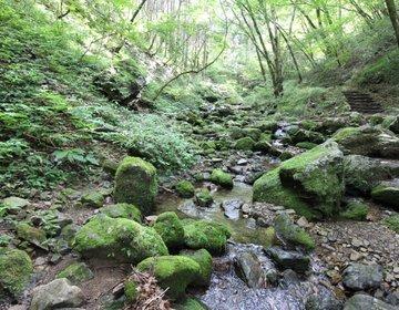 御岳山・日の出山を歩く、初心者おすすめ登山コース!【武蔵御岳神社、ロックガーデン、つるつる温泉】
