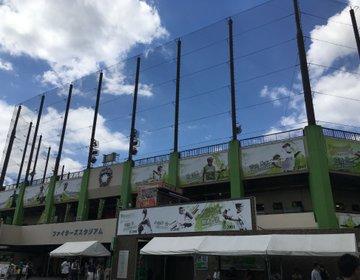 【関東球場なら野球のハシゴができる!】1日かけて北海道日本ハムファイターズの試合観戦してみました!