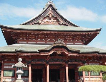 【山梨旅】日本一の鳴き龍がお出迎え!武田信玄ゆかりのお寺「甲斐善光寺」に行ってみた♪