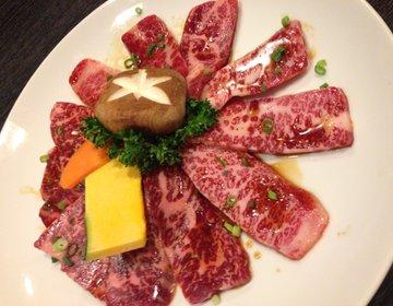 【肉尽くし!韓味館相模大野店と和幸】家庭的な雰囲気で味わう本格韓国料理!とトンカツ!