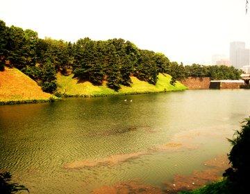 【都心で知的な休日】皇居桜田門から徒歩で日比谷周辺のグルメと文化施設を巡る!