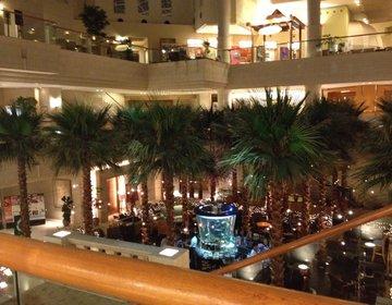 【宮崎の海を一望できる高級ホテル】大きなイベント時にはシェラトンで贅沢な一日を。