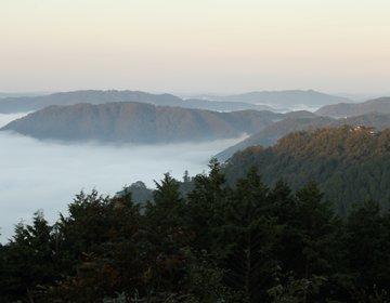 天空の山城 備中松山城へ! 絶景の雲海をのぞみ、山城に登る!【岡山県高梁市おすすめ観光スポット】