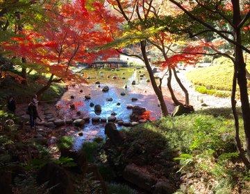 神々しい都内の絶景!今すぐ行って!紅葉を楽しみながらの散歩やロマンチックなデートに♪小石川後楽園