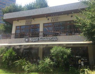 【外苑前ランチ】Royal Garden Cafeで銀杏並木をEnjoyしよう!食べログ3.5!