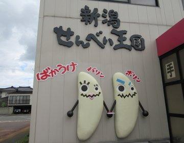 新潟の観光スポット☆せんべい王国(ばかうけ)でお腹いっぱいせんべいを食べよう!