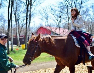【新千歳空港周辺観光なら】大自然や馬と触れ合えるノーザンホースパークへ!