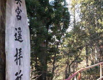 強運神社巡り奥多摩編。奥多摩が誇る関東屈指の霊山にて神社参拝からのご当地人気温泉で超回復コース。