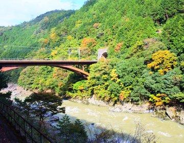 【京都・観光】嵐山デートの定番!トロッコ列車で京都の四季を感じよう!
