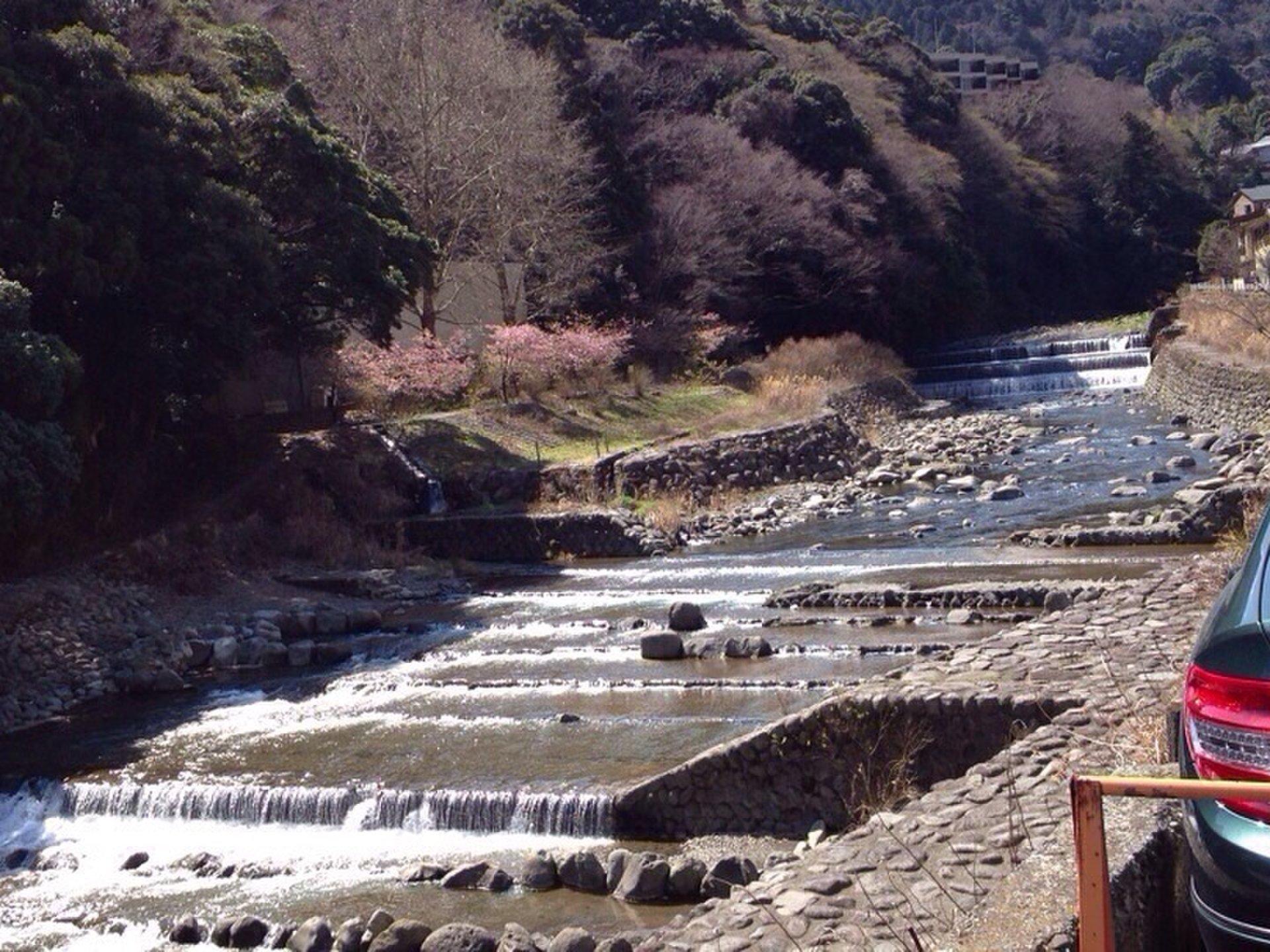 【箱根温泉でまったり旅行】日帰りデートでも楽しめるプラン紹介♪