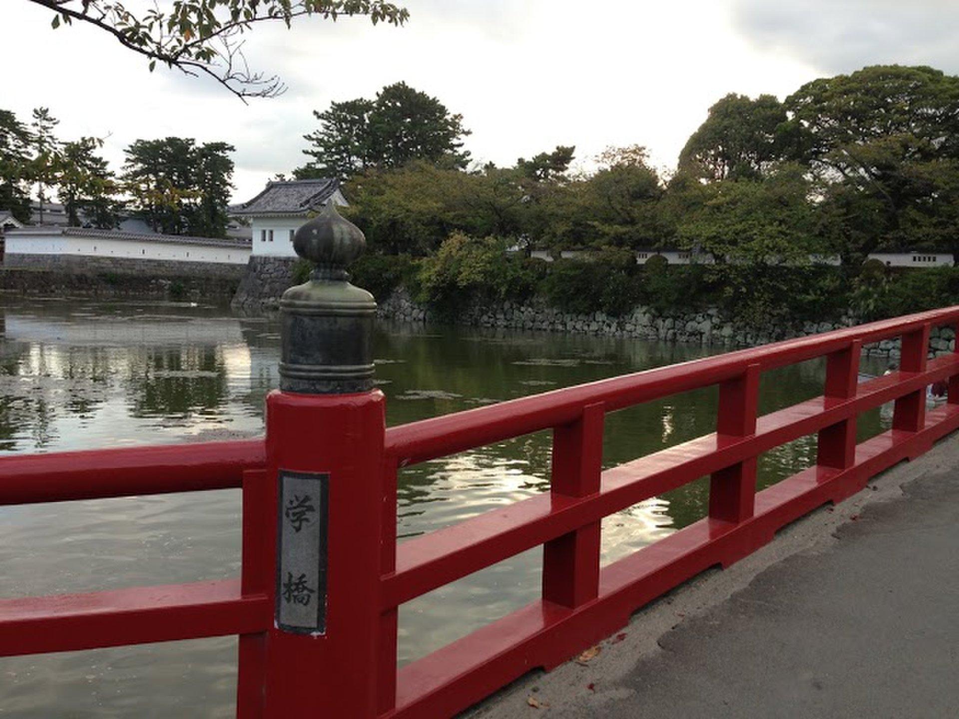 観光スポットで人気の神奈川県小田原のおすすめデートプラン!小田原城でお城めぐり!