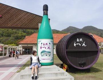 【出雲大社からすぐ!島根ワイナリーはワイン飲み放題♡】ほろ酔いでおみやげGET!