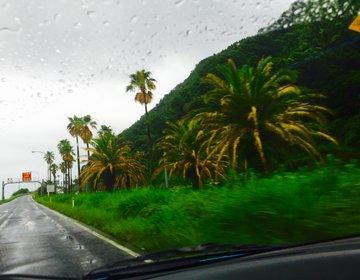 【晴れの日にいきたい!】鹿児島県をつっきる湾岸ドライブをエンジョイしよう!霧島~長島へ!