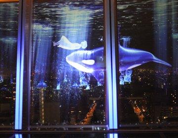 【名古屋テレビ塔】夜景とプロジェクションマッピングのコラボレーション☆最新版を徹底レポート!!