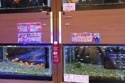 ロイヤルホームセンター 戸塚深谷店