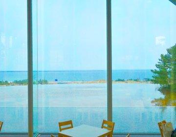 都内日帰りもOK!国営ひたち海浜公園の半日おすすめコース!【茨城・楽しい】