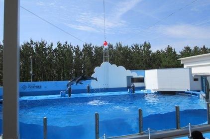 新潟市水族館マリンピア日本海