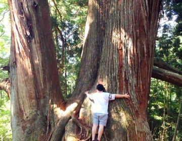 【で、でかい!】この夏最後に大自然を思いっきり堪能できる3選 / 郡上・石徹白