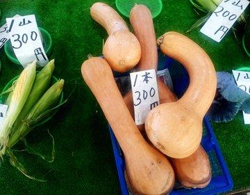珍しい!!美味しい鎌倉野菜を安く買える穴場市場!!デートの帰りに。野菜100円~