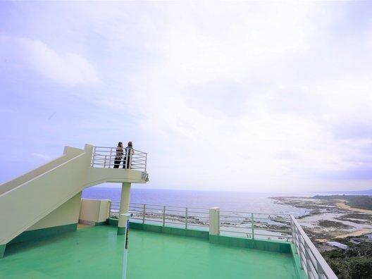 金見崎ソテツトンネル