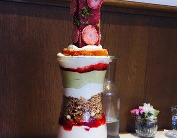 贅沢すぎる!迫力のいちごパフェ【SALON BAKE&TEA】
