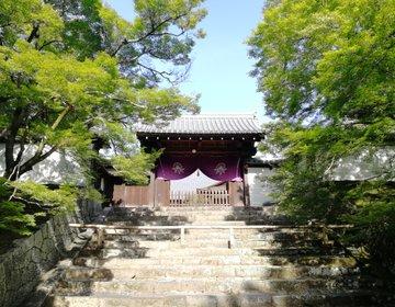 左京区修学院の穴場スポットで、新緑の京都を満喫しよう!