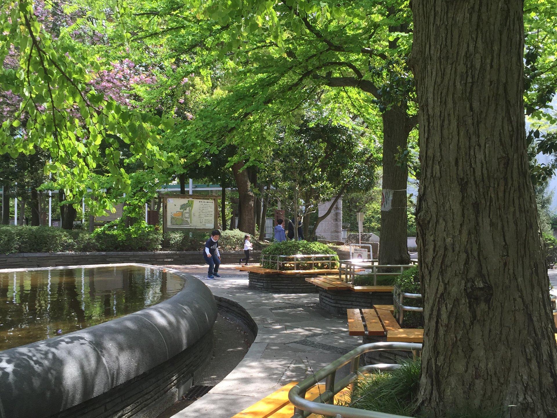 【晴れの日公園デートプラン】茗荷谷の学生カップル必見です!隠家パン屋のクリームパンで公園デート♪