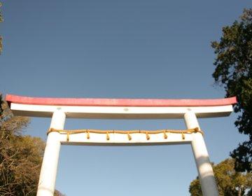 鶴岡八幡宮だけじゃない!鎌倉のオススメ神社〜真白い鳥居の鎌倉宮篇〜