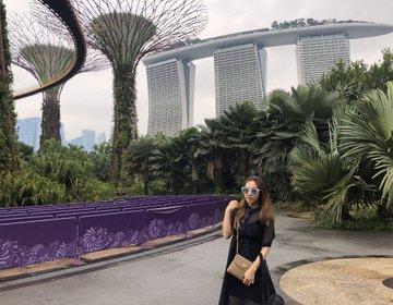 ガーデンズバイザベイお散歩♡シンガポール無料で楽しむフォトジェニック絶景‼︎