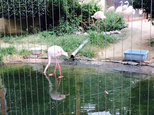 和歌山公園動物園