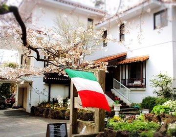 【伊豆高原絶品ランチ】別荘地に佇むイタリアンレストランジュピターは一生に一度は行くべきだ!