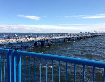 【横浜の本牧の海釣り施設(公園)で釣りデート!】穴場おすすめデートスポット!
